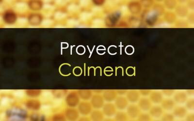 Proyecto Colmena