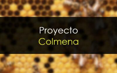 Proyecto colmena: Pulido del producto