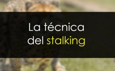 La técnica del stalking (acecho)