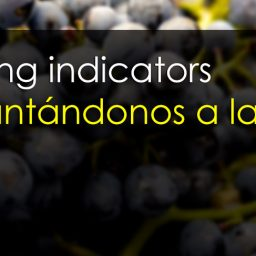Leading indicators - Cómo interpretarlos y aprovecharlos en trading