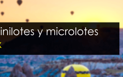 Lotes, minilotes y microlotes en Forex