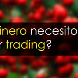 ¿Cuánto dinero necesito para hacer trading?